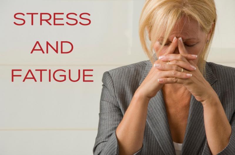 Stress & Fatigue - by Kelly Brown - Birch Wellness Center
